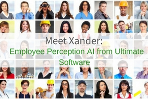 Xander Employee Perception AI